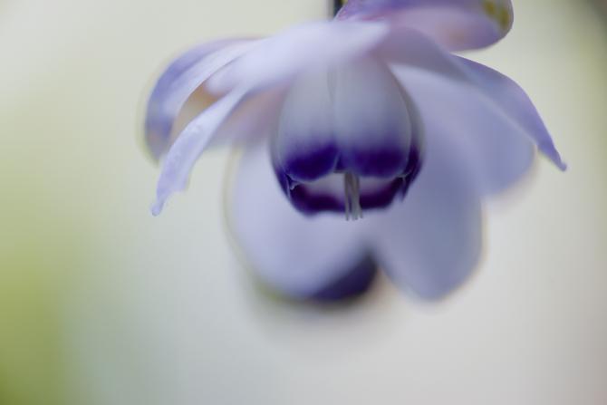 DSC06989-Edit-1-5.jpg